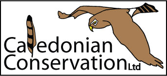 Caledonian Conservation